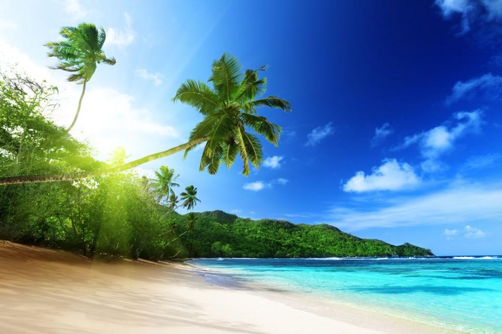 Island Trader Vacations Reviews Barbados