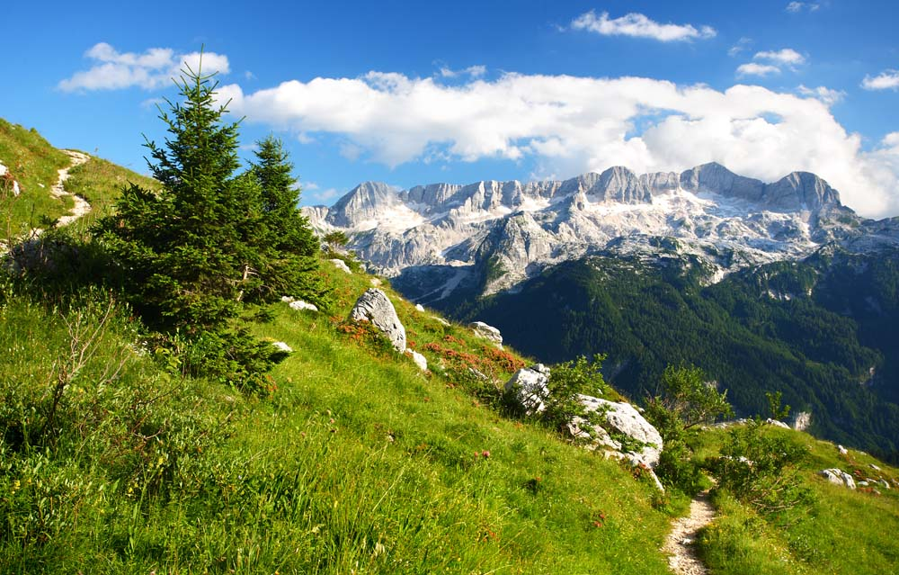 Island Trader Vacations Travel Services Department Explores the French Alps