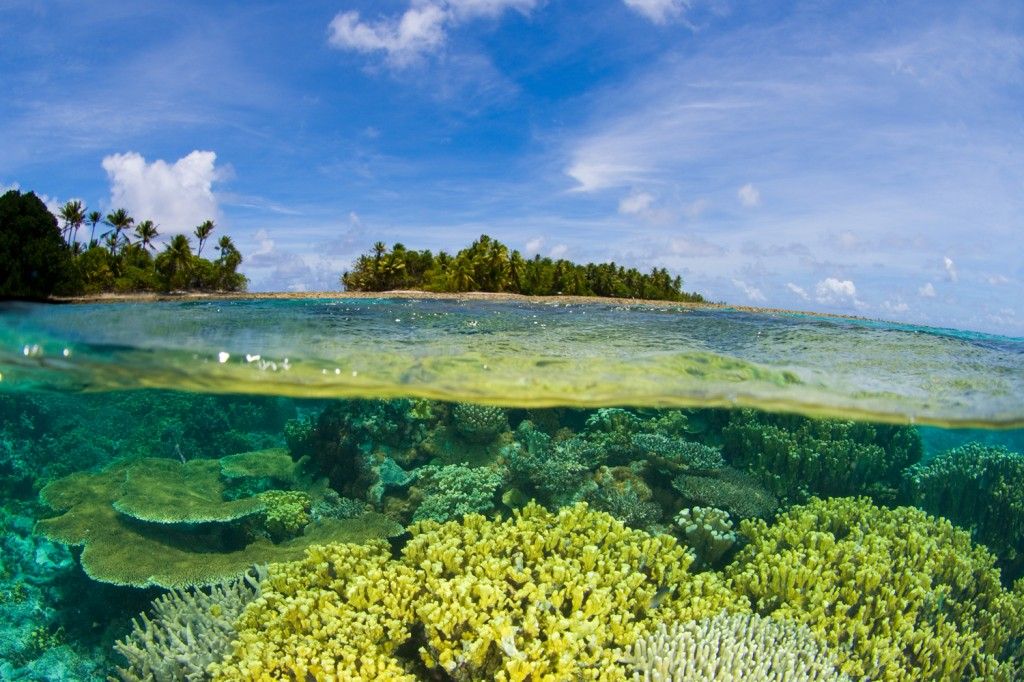 Island Trader Vacations Reviews The Marshall Islands