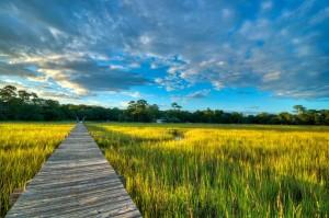 Island Trader Vacations Reviews Historic Charleston Islands